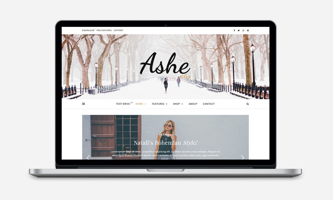 Ashe Blog - Free Version - WP Royal Themes